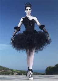 Resultado de imagen para cisne negro