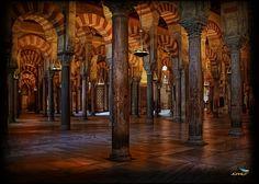 (120) Córdoba Mosque - Mosque of Córdoba (Spain)