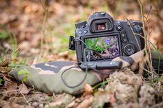 Diese 5 Naturfotografie Tipps solltest Du kennen um bessere Naturfotos zu machen. Erfahre mehr, wie ich meine Chance auf gute Bilder erhöht habe!