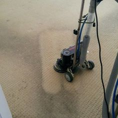 rug cleaning services near me Steam Cleaning Services, Types Of Rugs, Rug Material, How To Clean Carpet, Clean House, Vancouver, Upholstery, Area Rugs, Tapestries