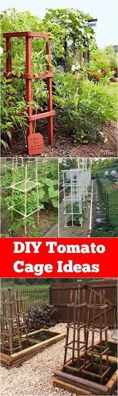 DIY Tomato Cage Ideas