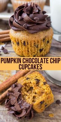 These Pumpkin Chocolate Chip Cupcakes are moist, fluffy and topped with fluffy chocolate frosting. They have all your favorite fall flavors thanks to pumpkin, cinnamon, brown sugar & vanilla – then th Holiday Desserts, Just Desserts, Delicious Desserts, Yummy Food, Halloween Dessert Recipes, Halloween Baking, Holiday Foods, Chocolate Chip Cupcakes, Pumpkin Chocolate Chips