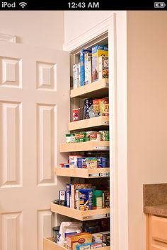 understairs pantry | Kitchen idea - under stairs pantry perhaps