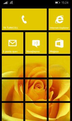 Windows Phone 8.1: Havalı Başlangıç Ekranları - II (Sarı Gül) Windows Phone Nasıl Yapılır?