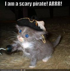 ARRRR... Talk like a pirate day