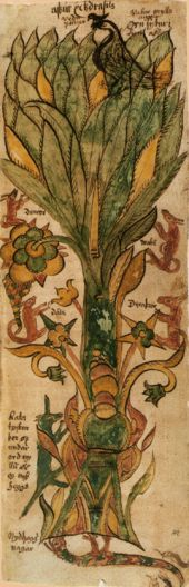 folkthings: midwinter-fire: Medieval painting of Yggdrasill, the world tree of Norse Heathenism. The painting comes from the century Icelandic manuscript. Medieval Painting, Medieval Art, Art Gallery, Visual Metaphor, Aleister Crowley, Old Norse, Asatru, Viking Age, Norse Mythology