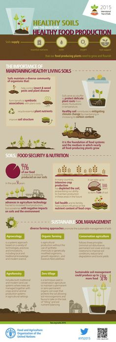 Healthy soils are the foundation of the food system. Our soils are the basis for agriculture and the medium in which nearly all food-producing plants grow. Healthy soils produce healthy crops that in turn nourish people and animals. Indeed, soil quality is directly linked to food quality and quantity.
