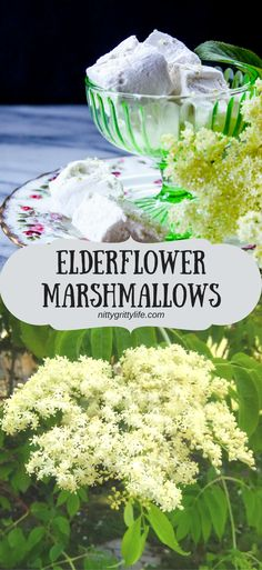 Elderflower Marshmallows are suitable for a fairy. Delicious, floral, sweet - these elderflower marshmallows a whimsical treat.