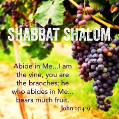 Shabbat Shalom! ~ The beautiful promise found in John 5:4-10