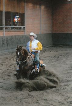 Western reining slide stop. My sport Reining Horses, Horse Quotes, Horse Love, Cowgirls, Equestrian, Westerns, Pony, Live, Animals