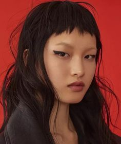 Image result for pixie bob asian
