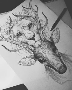 Fantastic Screen deer drawing sketches Strategies Exactly what is the real difference between pulling along with illustrating? Animal Sketches, Art Drawings Sketches, Tattoo Sketches, Animal Drawings, Tattoo Drawings, Cool Drawings, Sketch Art, Pencil Drawings, Deer Sketch
