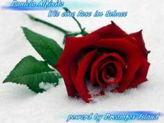 Daniela Alfinito - Wie eine Rose im Schnee - YouTube