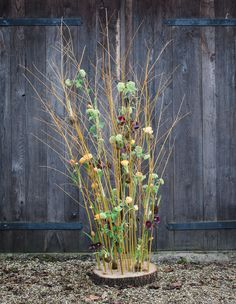 Natural Bouquet, Flower Tower, Spring Flowers, Nature, Plants, Flora, Nature Illustration, Off Grid, Plant