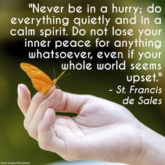 """""""Never be in a hurry; do everything quietly and in a calm spirit. Do not lose your inner peace for anything whatsoever, even if your whole world seems upset."""" - St. Francis de Sales"""