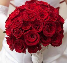 Muchas mas rosas