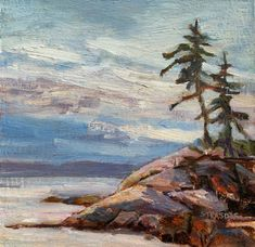 Marcela Strasdas is a Victoria BC Artist who paints in oils and acrylics that depict the beautiful coastal scenery of BC as well as wonders from her garden, her travels and all around her. Vancouver Island, Landscape Paintings, Natural Wood, Coastal, Scenery, Nature, Artist, Travel, Beautiful