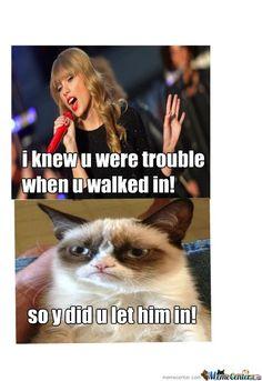 What a fantastic point-Best Taylor Swift memes Ohh! I love grumpy cat! Grumpy Cat Quotes, Grump Cat, Funny Grumpy Cat Memes, Cat Jokes, Funny Cats, Funny Jokes, Hilarious, Funny Men, Cat Cat