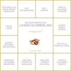 Cacao Cru, Le Cacao, Bio, Healthy Life, Encouragement, Nutrition, Fruit, Chakra, Boutique
