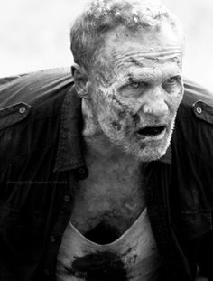 Merle Dixon: one of the best looking walkers I have seen so far. Sad for him to die though :'(
