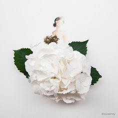 white hydrangea by love.limzy, via Flickr