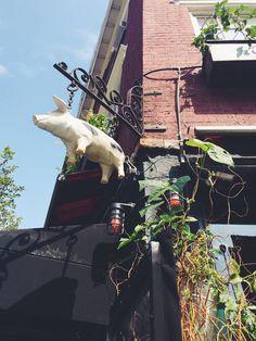 the spotted pig314 w 11th st, new york, ny.para muitos o melhor hamburguer de ny.http://www.thespottedpig.com/