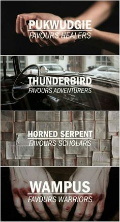 Proud Horned Serpent Harry Potter Houses, Harry Potter Fandom, Harry Potter World, Harry Potter Hogwarts, American Wizarding School, Welcome To Hogwarts, Slytherin Pride, Memes, Fantastic Beasts And Where