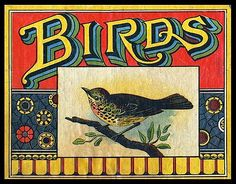I love birds...and I love vintage. It's perfect!