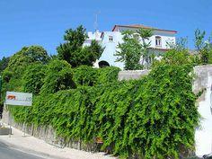 DSCN1638 Monchique, Portugal Gd, Portugal, Sidewalk, Pavement