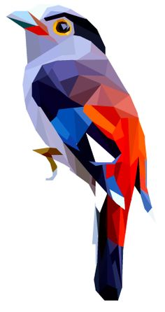 Rainbow Bird Geometric Art | pinterest.com/emilylan752