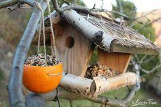 Karmnik dla ptaków z pomarańczy. Bird feeder for the birds with orange. www.marciatime.pl