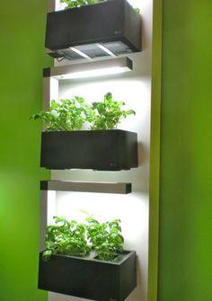 'Herb:ie' by Finish company 'IndoorGarden', designed to grow herbs indoors #indoorgardening