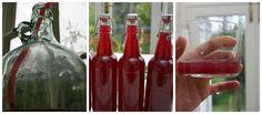 Home Brewed Wild Blackberry Cider Method  #homebrew