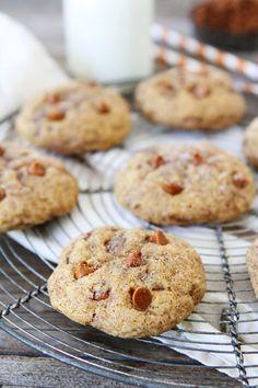 Pumpkin Cinnamon Cookies | Fall cookie recipes