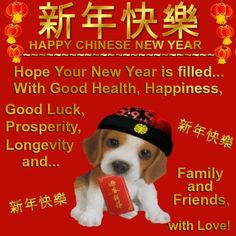 Chinese New Year Feb 16th 2018/ Happy Chinese New Year section. Send your hopes to anyone with this cute chinese puppy with your love! Permalink : http://www.123greetings.com/events/chinese_new_year/happy/hopes_for_you.html