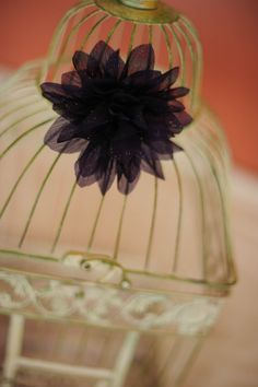 wedding cards cage
