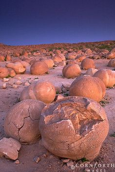 """""""The Pumpkin Patch"""" rock formations at Anza Borrego State Park, CA."""