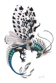 Dragon with butterfly wings