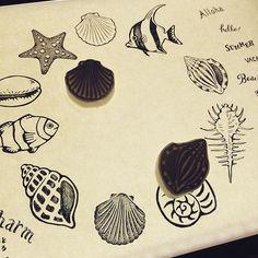 明日の消しゴムはんこ教室の図案。 貝殻いろいろです。 #消しゴムはんこ #ワークショップ #貝殻 #イラスト #illustration #sell #図案…