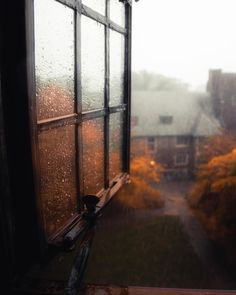 This photo is such a mood today! We're having a rainy (and cold! Got to wear my new orange sweater and watch the rain Herbst Bucket List, Cozy Aesthetic, Autumn Cozy, Autumn Rain, Autumn Forest, Autumn Photography, Autumn Aesthetic Photography, Rainy Day Photography, Window Photography
