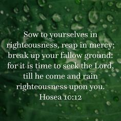 In Righteousness & Truth  Oh Hosea ,  righteous & true  Hosea 10:12