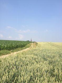 Schimmert, Zuid-Limburg