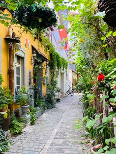 Just a beautiful view in a nice little street in Speyer #speyer #vintage #travel #visit Vintage Travel, Street, Nice, Beautiful, Speyer, Walkway