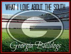 UGA - basically and the sunshine and tea Georgia Girls, Georgia On My Mind, Sick, Georgia Bulldogs Football, Fall Football, College Football, Athens Georgia, Southern Belle, Southern Living