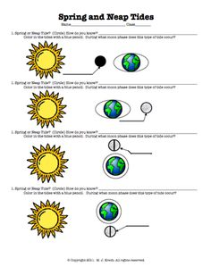 Here's a nice worksheet for  understanding spring and neap tides.