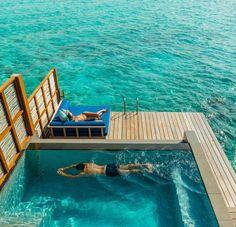 Dive In. Dry Off. Repeat. @Mandy Bryant Bryant Bryant Bryant Dewey Seasons Resorts Maldives