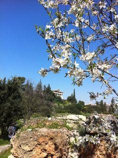 VISIT GREECE| Spring in #Athens, Greece