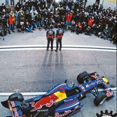 redbul F1