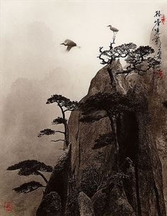 Pine Peak || Don Hong-Oai (amazing photographs that look like Chinese traditional paintings using a style known as pictorialism)