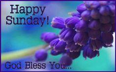 Happy Sunday! God Bless You.